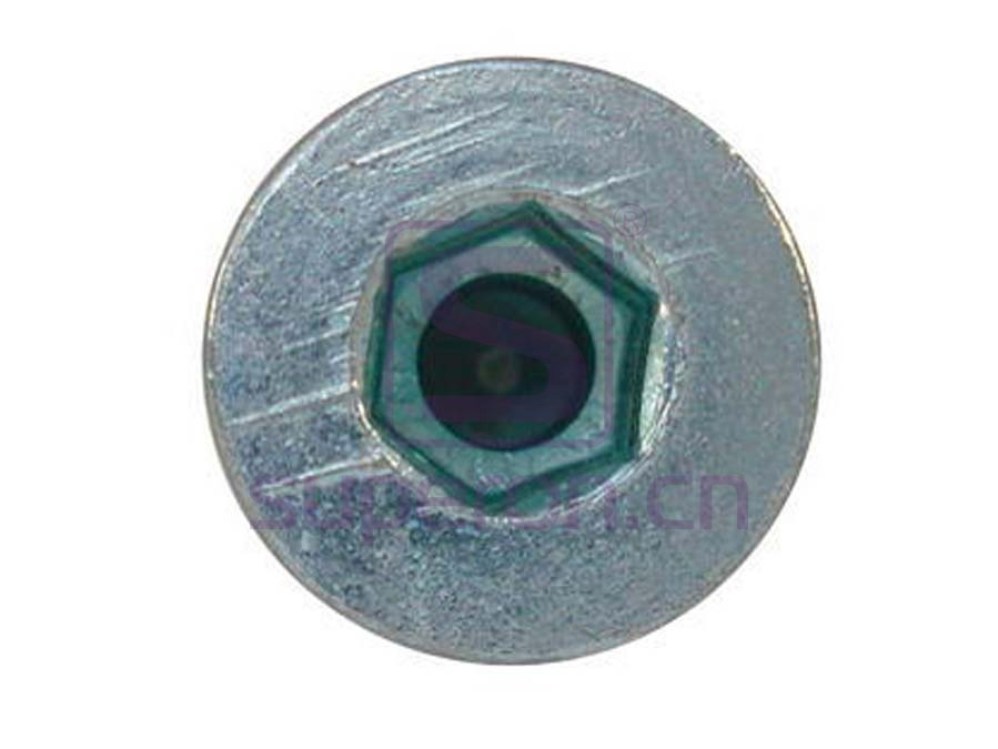 10-011 (10-012) | Cabinet screw 6,3mm